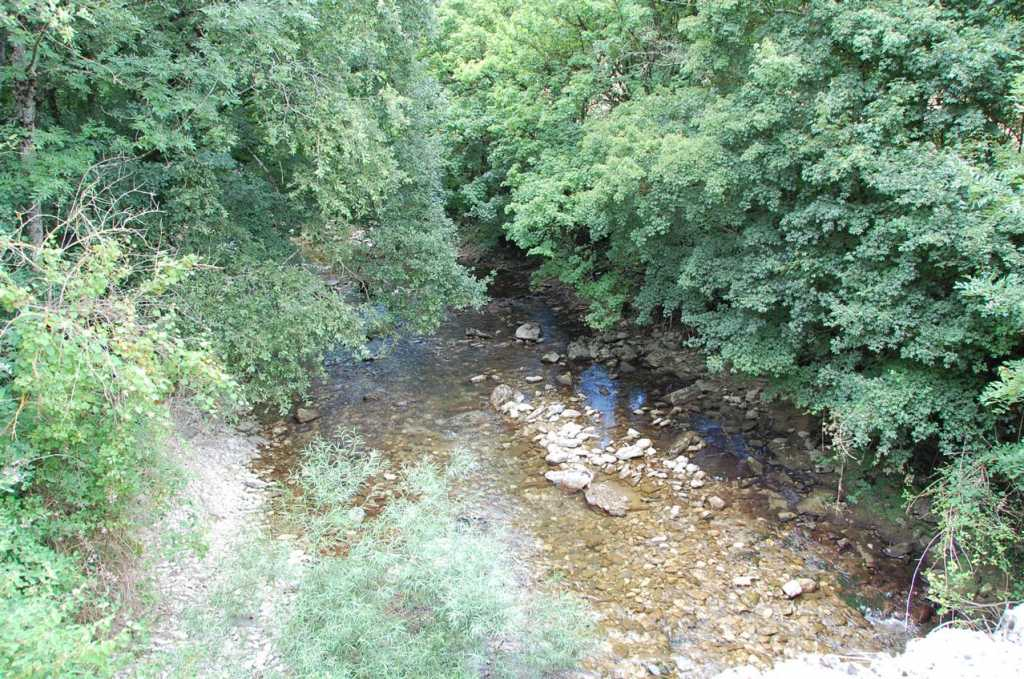 vista rio